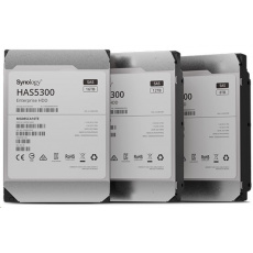 Synology HDD HAS5300-12T (12TB, SAS 12Gb/s, 256MiB)